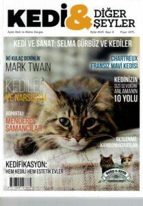 Love_Turkey_Cat_Magazine_neko_toruko_16053006 (15)