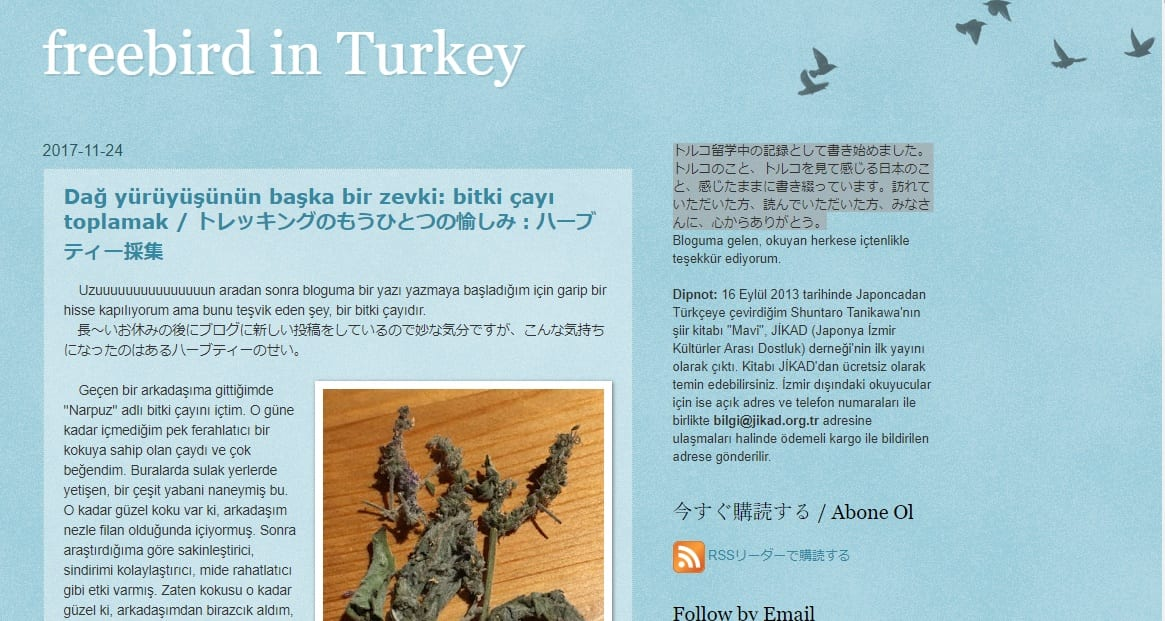 ブログ紹介 freebird in Turkey